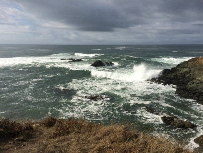 Things to Do on a Rainy Day at Abalone Bay in Sea Ranch