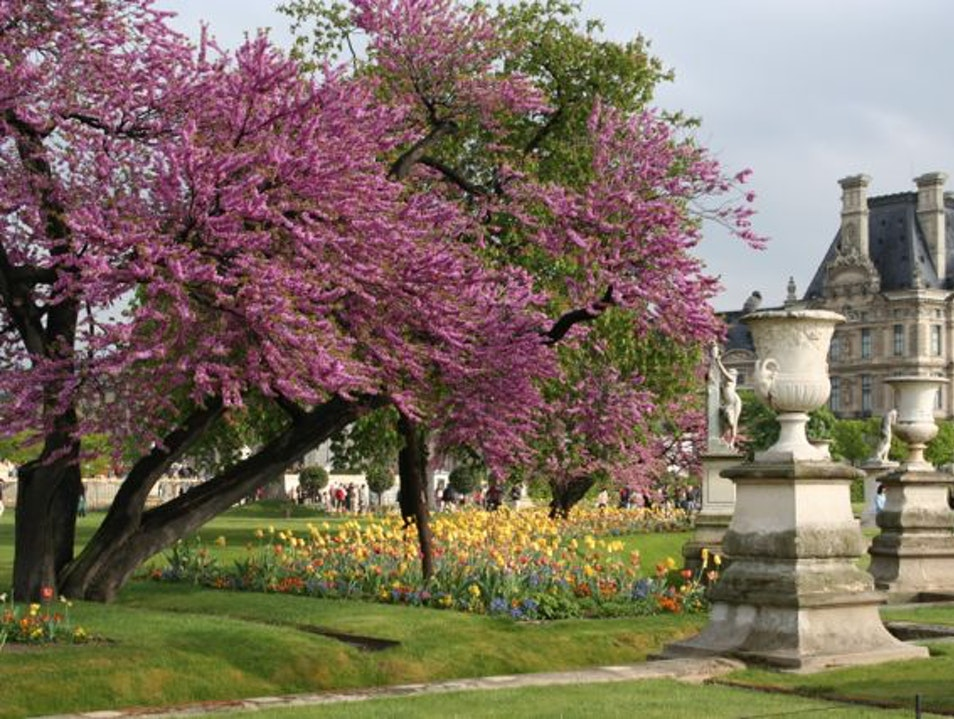 The Tuileries Gardens: How to hide from all the tourists and other important info.