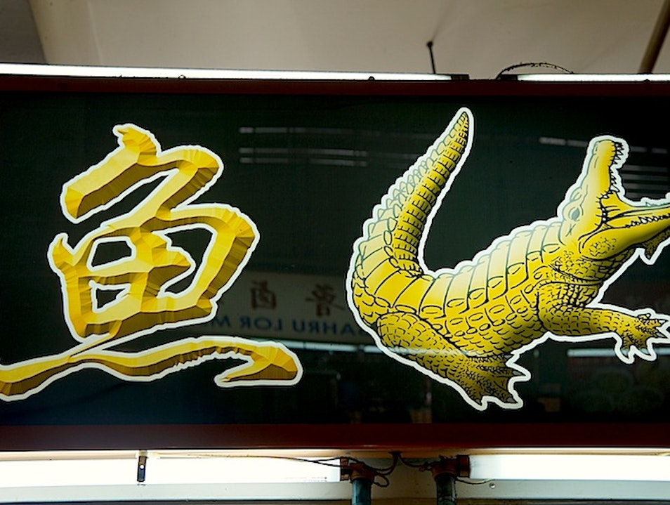 Exploring the Health Benefits of Ginseng Crocodile Soup Singapore  Singapore