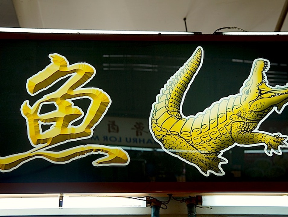 Exploring the Health Benefits of Ginseng Crocodile Soup