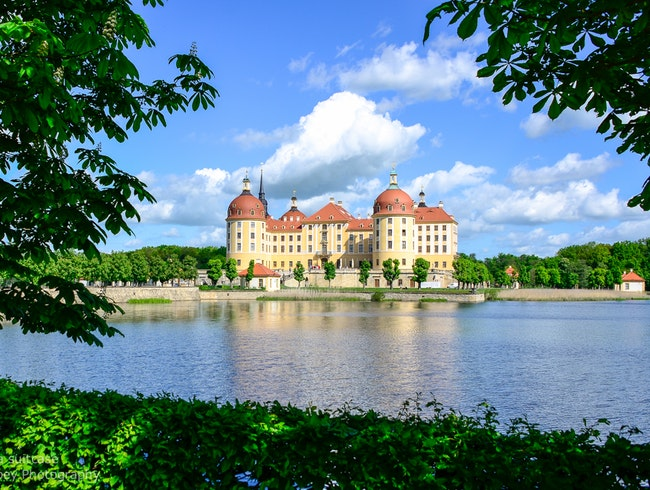 Visit to Moritzburg Castle