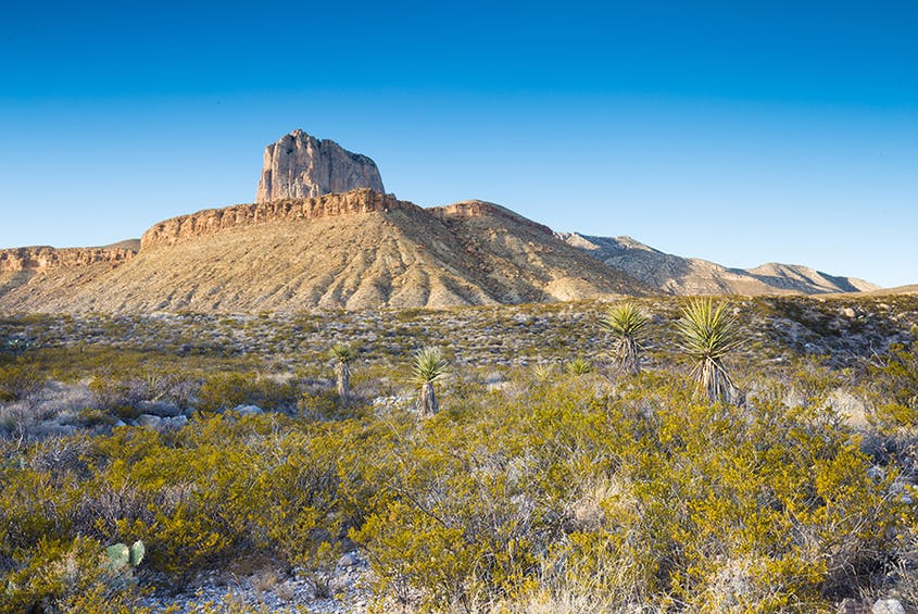 Guadalupe Mountains National Park protects an extensive marine fossil reef, what was once a major inland sea millions of years ago.