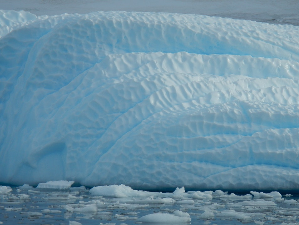 Ice Peanut Anyone??   Antarctica