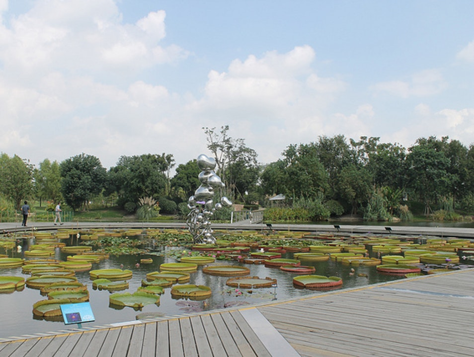 Impressive Gardens in Songjiang Shanghai  China