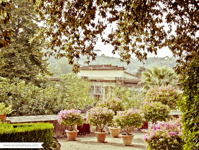 The beauty of Giardino di Boboli
