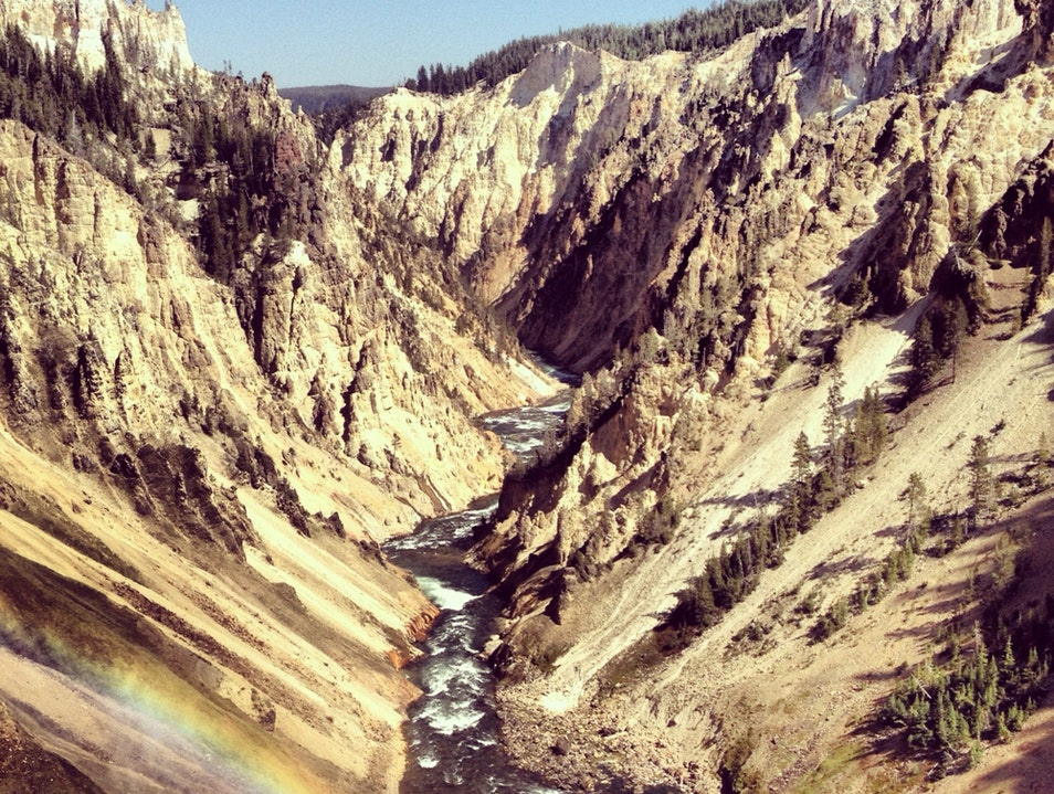 Step Into Bliss At Lower Falls (Yellowstone)