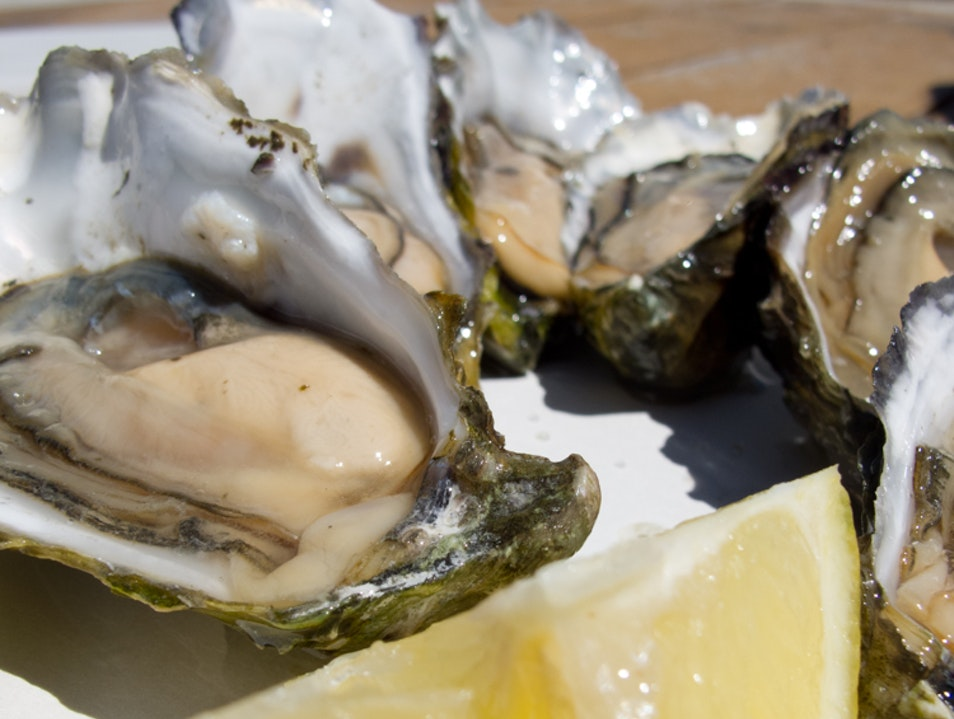 Drake's Bay: Fresh local oysters without the wait Point Reyes Station California United States
