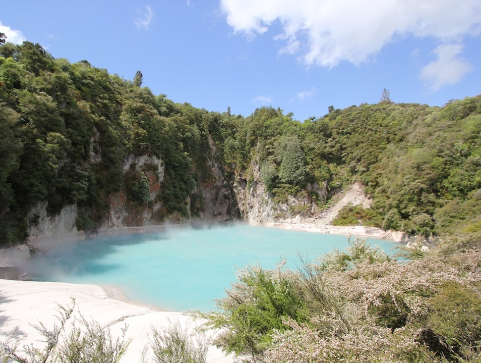 Find Geothermal Spots in Rotorua Rotorua  New Zealand