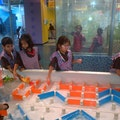 STELLAR CHILDRENS MUSEUM - AMBIENCE MALL, GURGAON Gurgaon  India