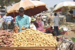Jamalpur Vegetable Market