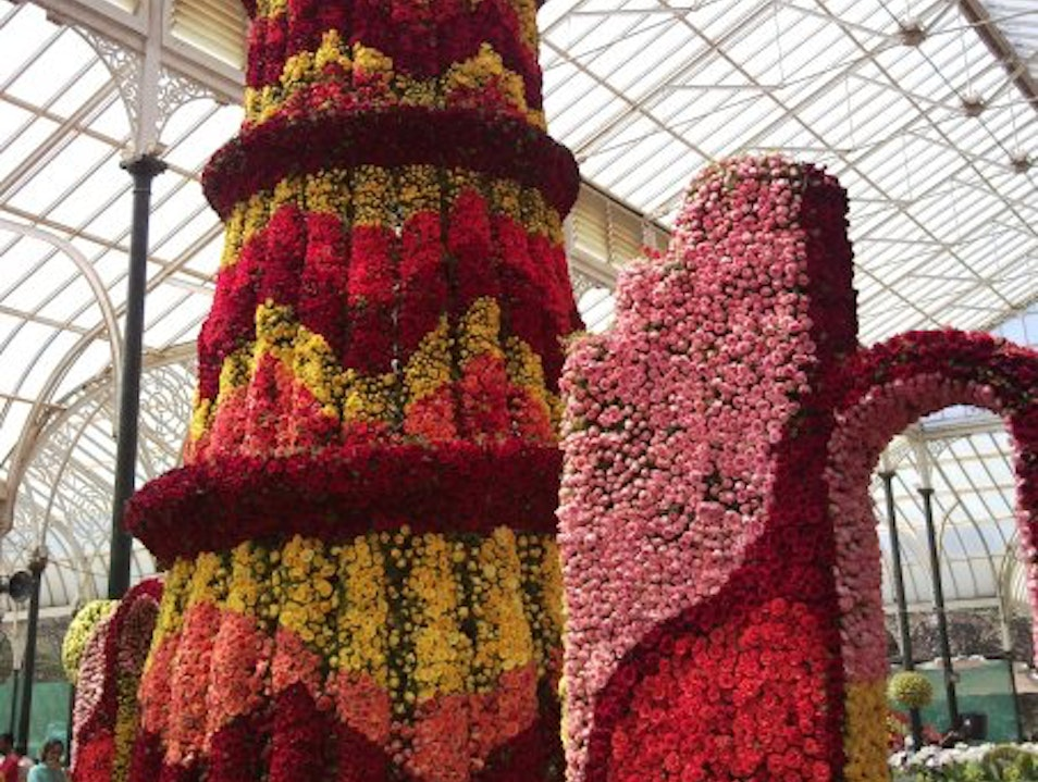 The Bi-Annual Flower show at Lalbagh Bangalore  India