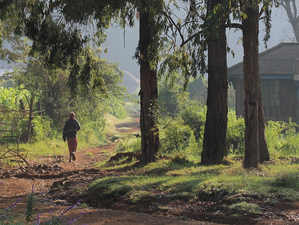 While Doing Good, Take a Surprisingly Scenic Walk