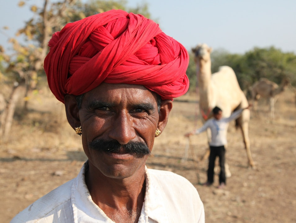 Camel herder Indore  India