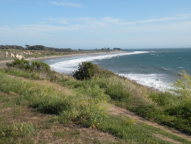 Ellwood beach & Monarch butterfly preserve