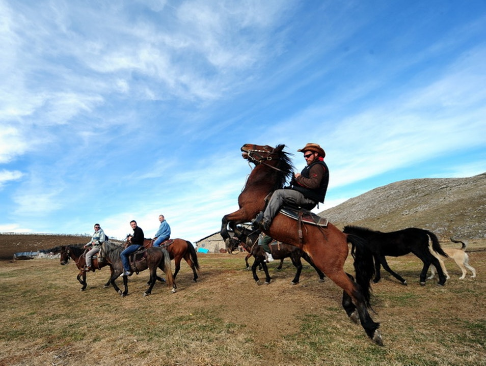 Horse riding in Western Macedonia