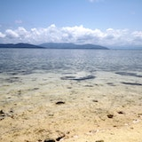 Cairns Premier Reef and Island Tours - Ocean Free and Ocean Freedom