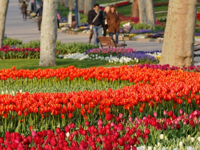 Gülhane Park and Tea Gardens Istanbul  Turkey