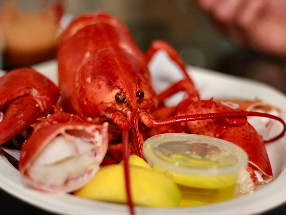 Florida Fresh Seafood in Cape Coral