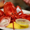 Lobster Lady Seafood Market & Bistro Cape Coral Florida United States