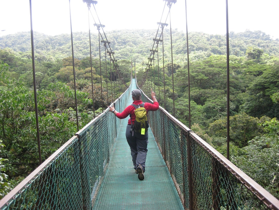 Dancing across the suspension bridge, almost 2 miles of walkways high above the Monteverde canopy Puntarenas  Costa Rica