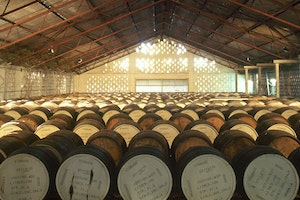 Mount Gay Rum Distilleries