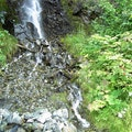 Waterfall Haines Alaska United States