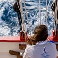 Tradition Sailing Charters Sandy Ground  Anguilla