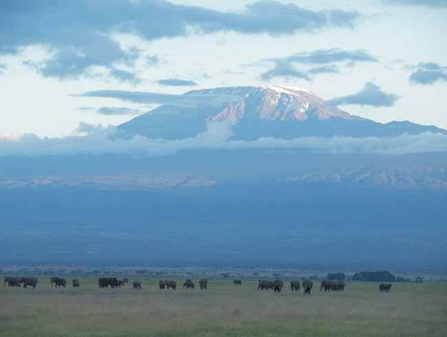 On Safari in Amboseli National Park