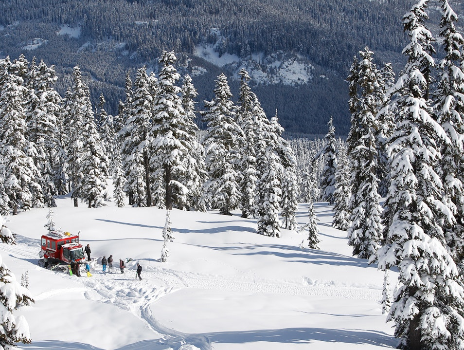 The Thrill of Backcountry Skiing Whistler  Canada
