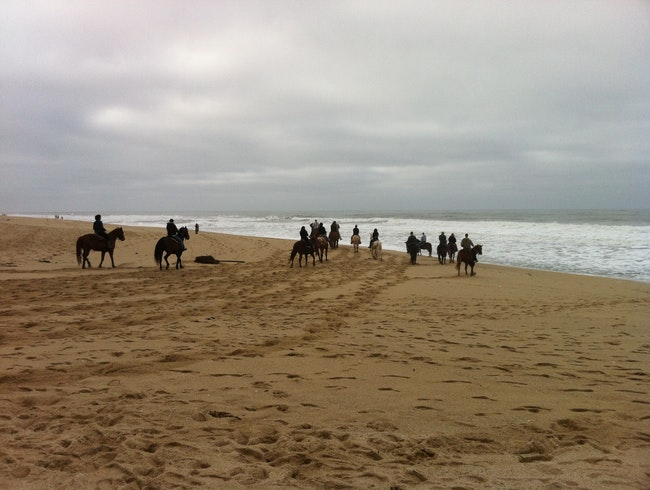 Horse riding by the ocean