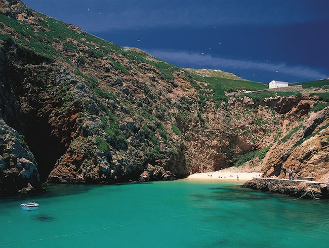 Berlengas – small islands, big sights