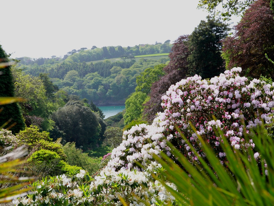Trebah Gardens, Cornwall Mawnan Smith  United Kingdom