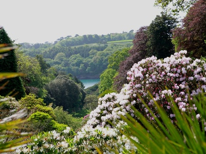 Trebah Garden Mawnan Smith  United Kingdom