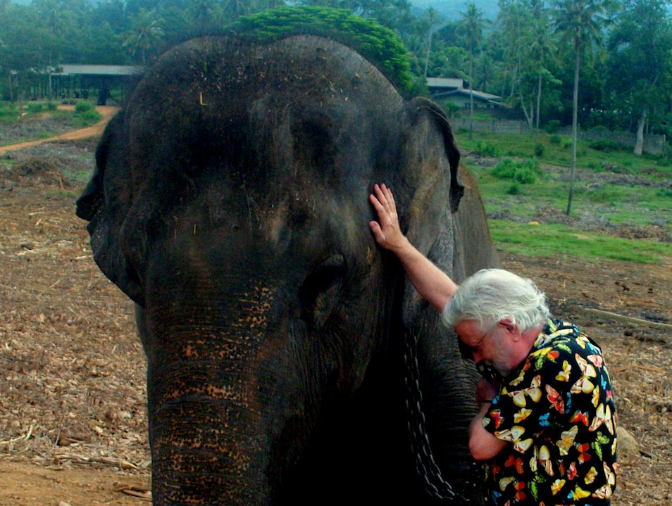 Zoning out an elephant in Sri Lanka