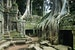 The Temple Where Angkor and the Jungle Collide
