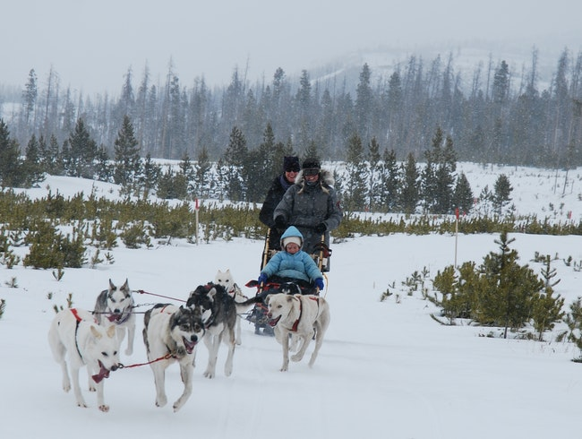 Around Colorado: Dog sledding program near Granby