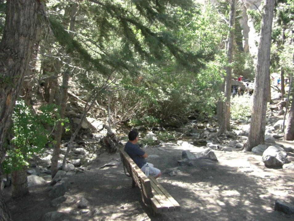 Discover Zapata Falls- An Easy Hike for the Whole Family MOSCA Colorado United States