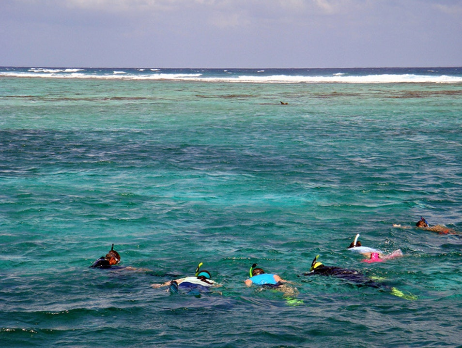 Snorkel and Swim With Sharks at Hol Chan Marine Reserve