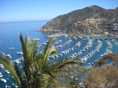 Catalina Island Two harbors Cove Avalon California United States