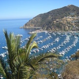 Catalina Island Two harbors Cove