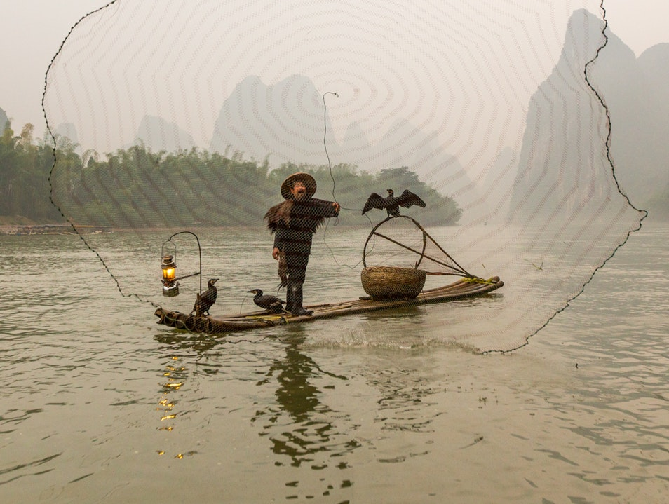 The Cormorant Fishermen of Xingping Xianyang  China