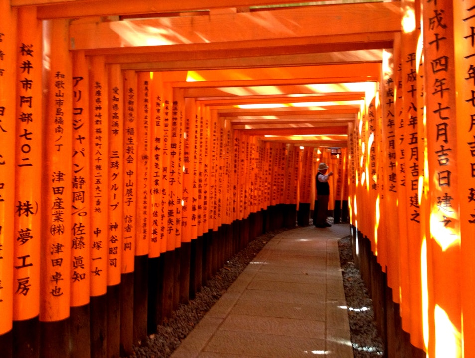 A Thousand Orange Gates Kyoto  Japan