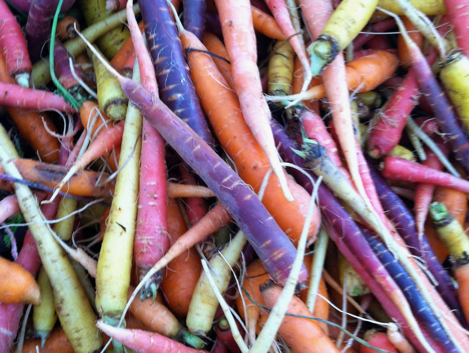Year-Round Farm Vegetables Boston Massachusetts United States