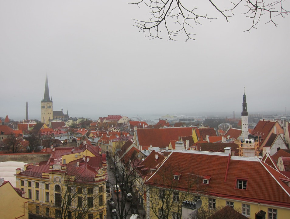 Unusual weather in Tallinn Tallinn  Estonia