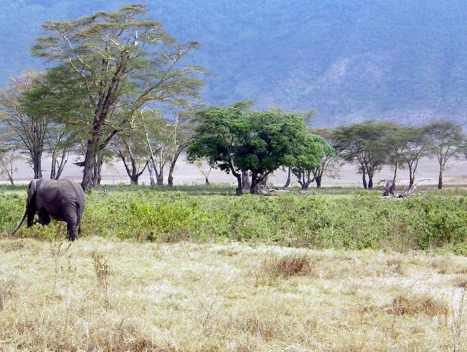 Africa Takes Your Breath Away... Ngorongoro  Tanzania