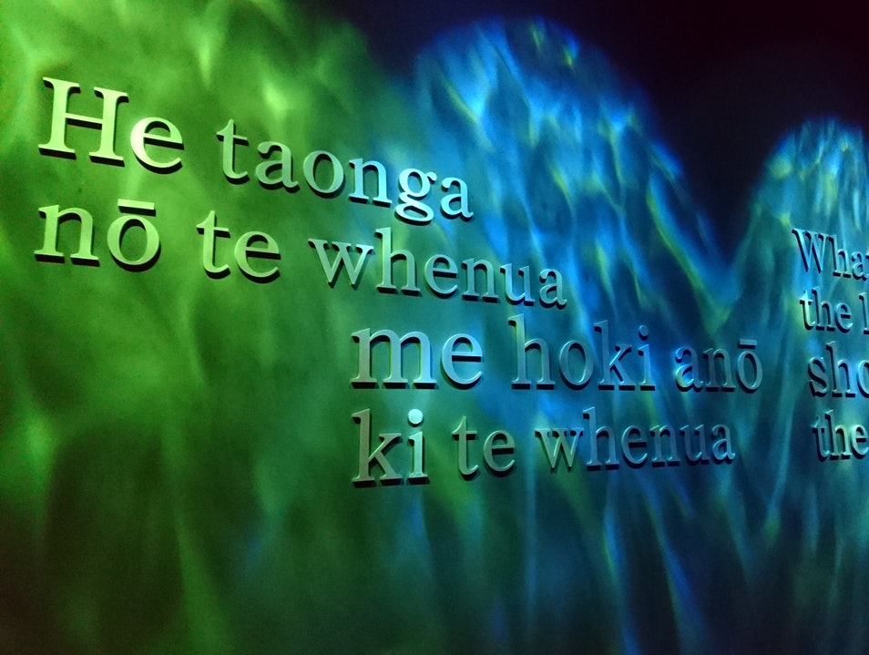 Te Papa: Our Place of Treasures Wellington  New Zealand