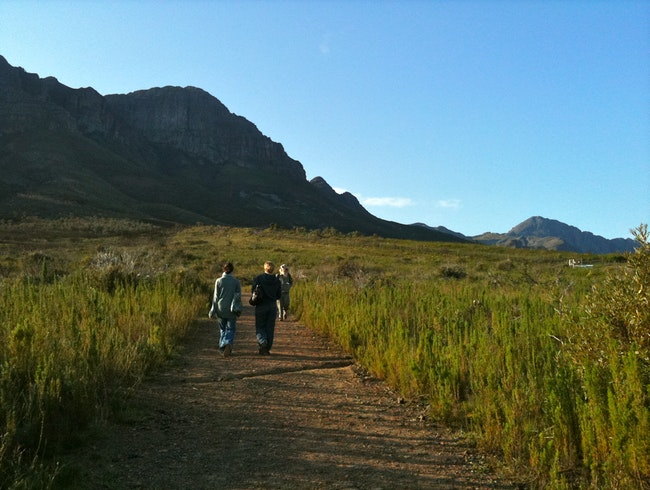 Hiking in the Helderberg