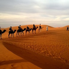 Morocco VIP Tours - Luxury Camel Trekking - Tailor Made Tours Morocco