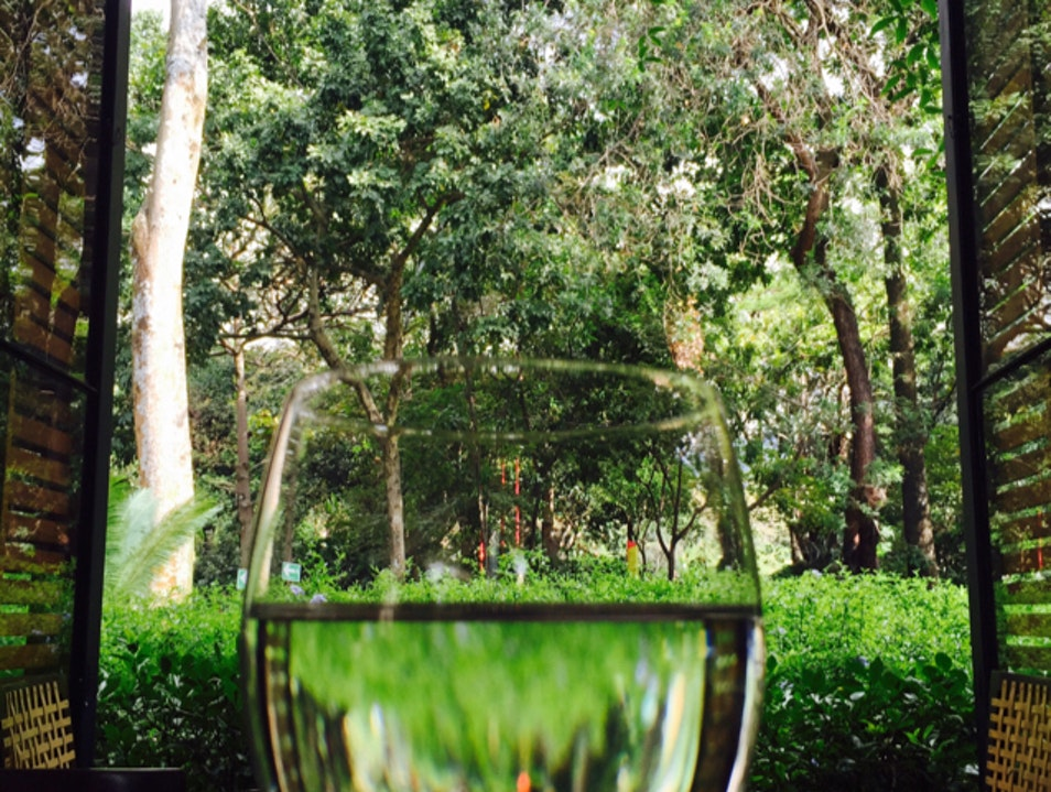 Garden in a Glass  Medellin  Colombia