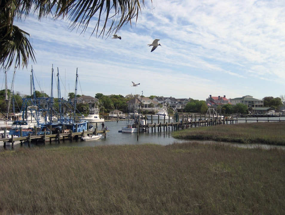 Lowcountry landscape Mount Pleasant South Carolina United States